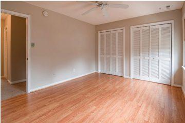 הדברה לאחר שיפוץ דירה: האם אנחנו צריכים?